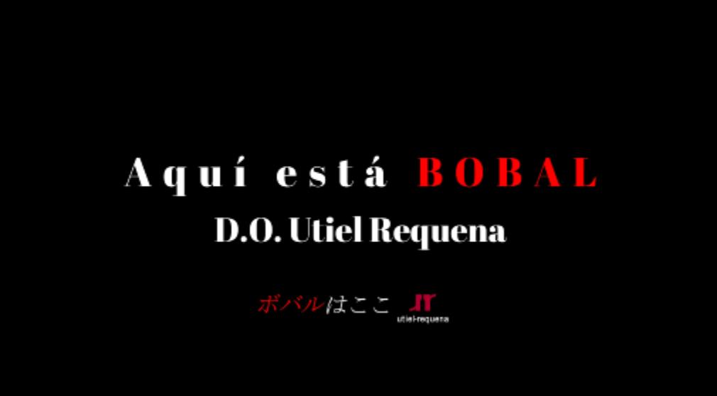 「¡Aquí está Bobal! ボバルはここ!」がユーチューブ・デビュー