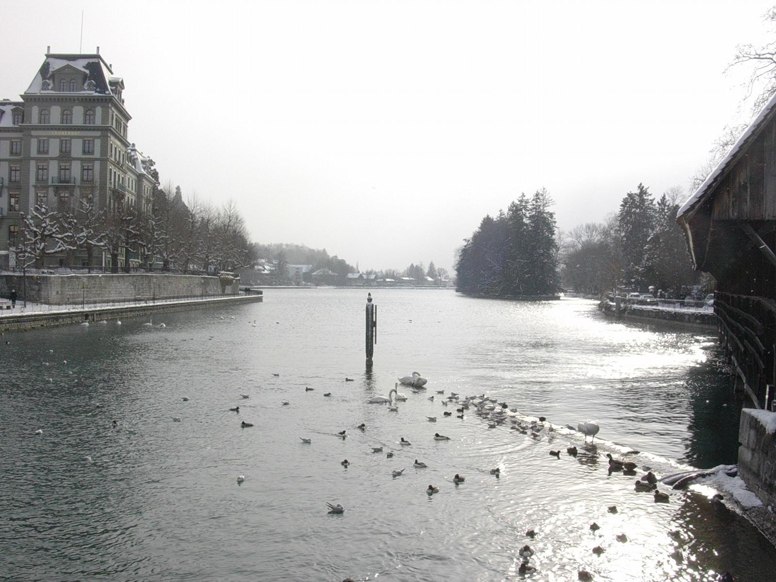 Thun - Göttlisteig mit Blick auf Schilthorn, Blümlisalp und Niesen im Januar 2005