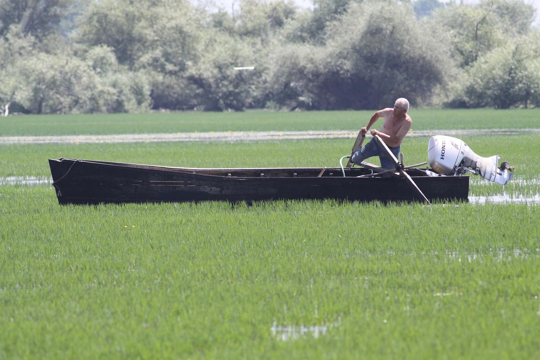 Fischer des Kerkini-Sees bei der Arbeit im Seichtwasser