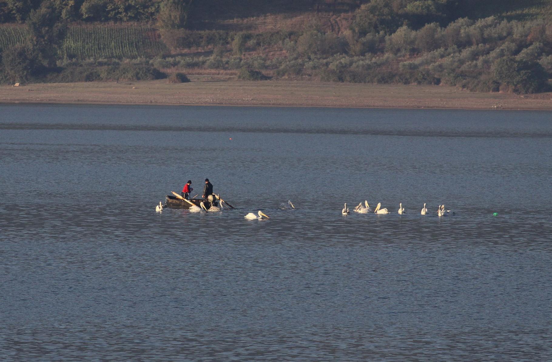 Fischer bei ihrer Arbeit, tolerieren die sie begleitenden Pelikane