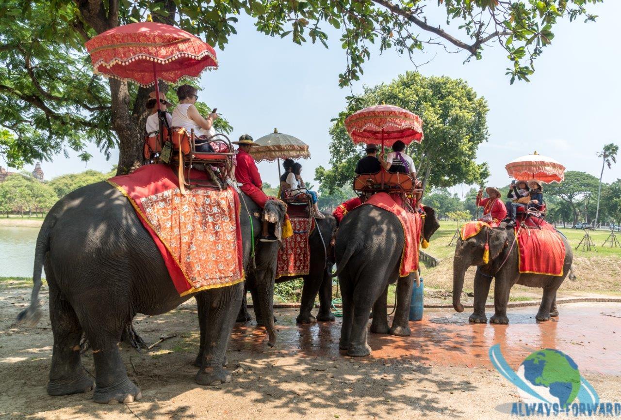 Touristen beim Elefantenreiten