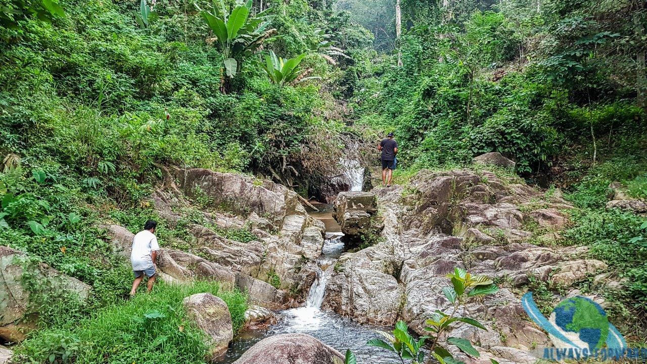 baden im Dschungel