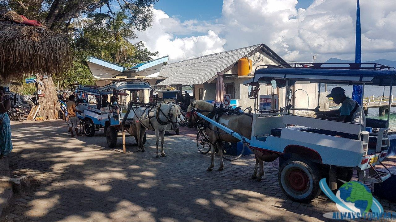 die Kutschen für den Transport stehen bereit