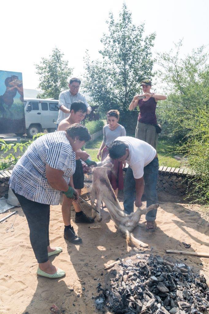 Die Ziege wird mit Fleisch, Gewürzen und heissen Steinen gefüllt
