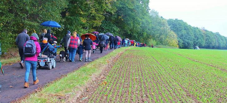 Einer der ersten Waldspaziergänge im Dannenröder Wald mit 350 Teilnehmern im Okt. 2020, Bildcopyright B.Schlemmer