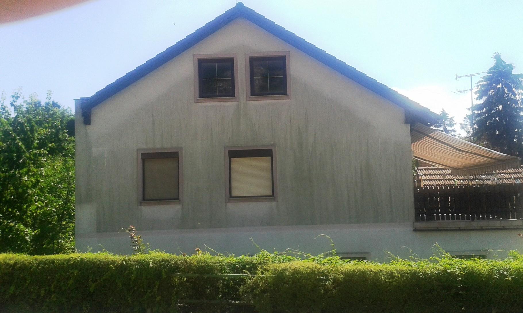 Fassade Hundsheim vorher