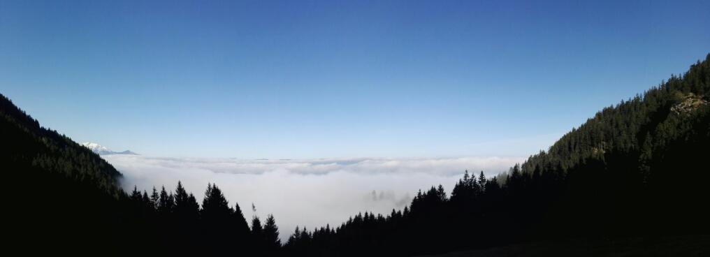 Nebeldecke über dem Rheintal