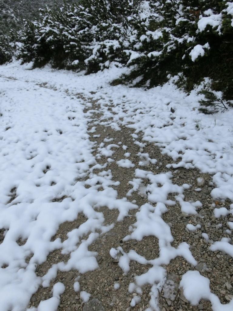 Der Schnee wird weniger.