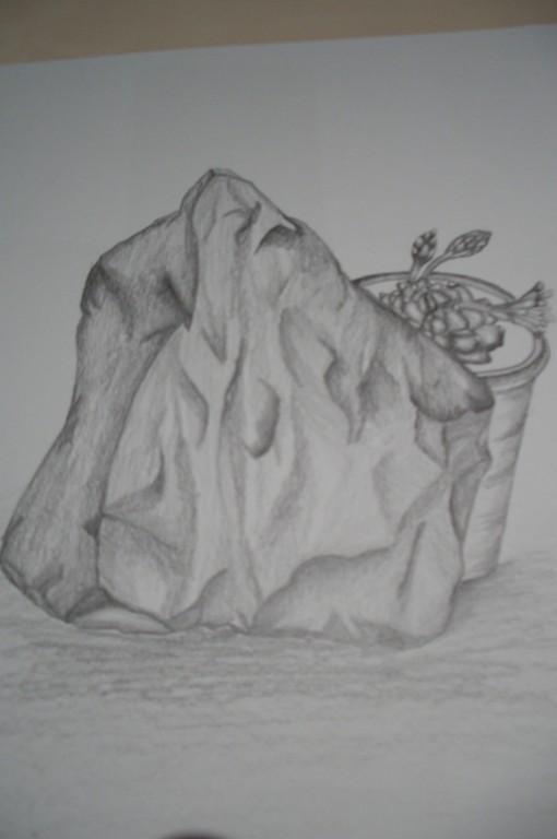 Bleistiftmalerei - Stein und Kaktus