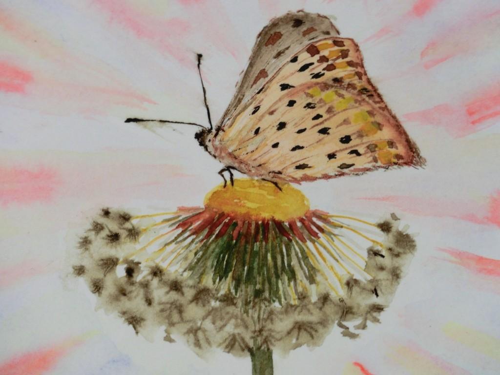 Aquarell - Schmetterling auf Pusteblume