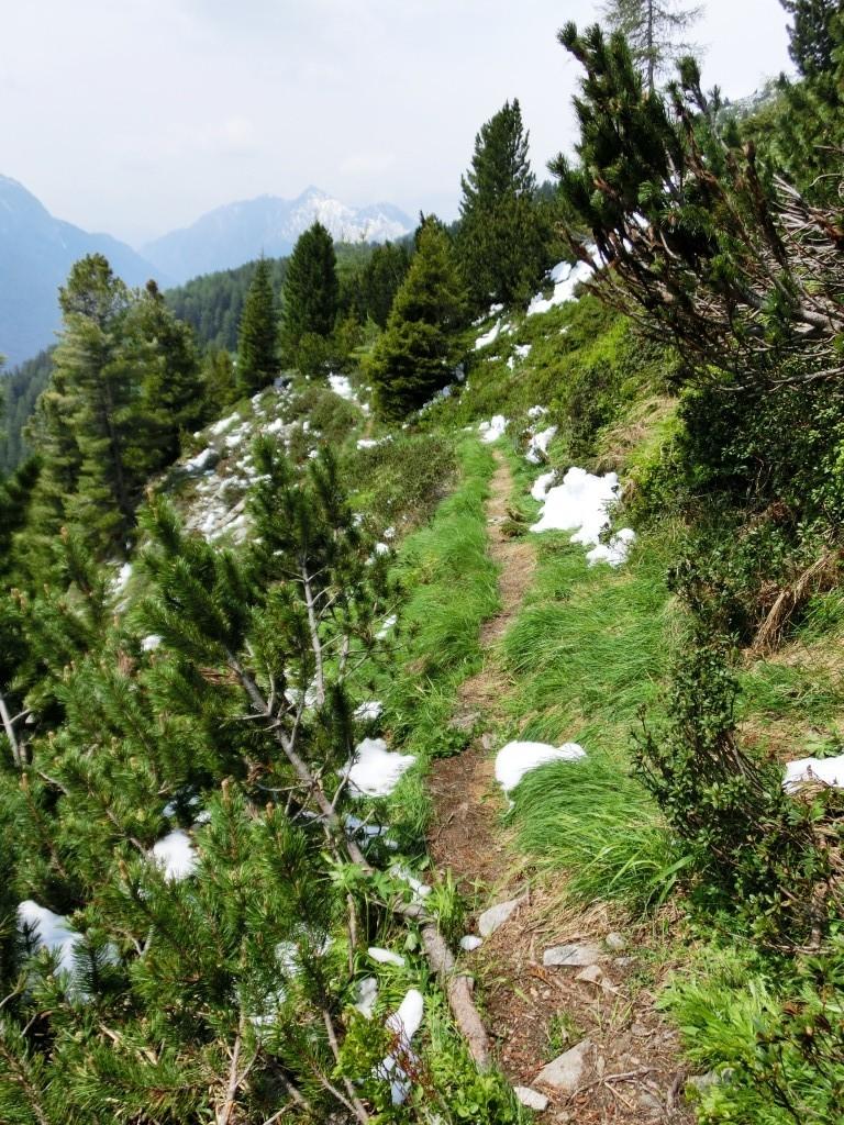 Der Weg über Wiesen und Hänge hinab nach Stein.