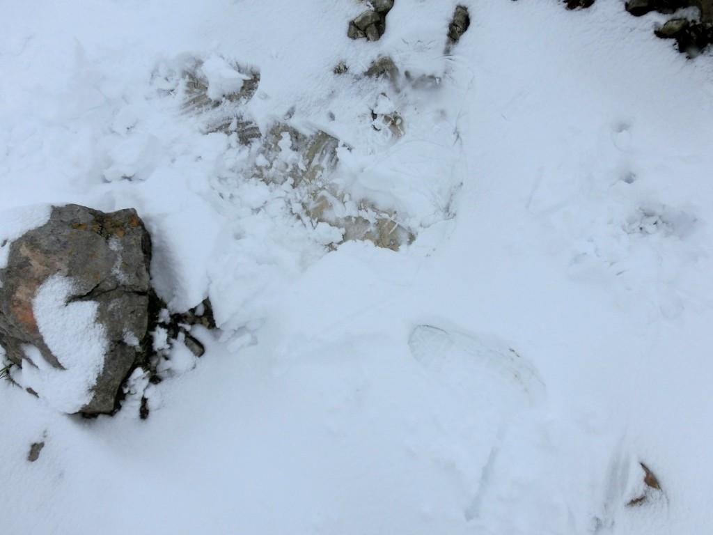 Eine Arschbombe im Schnee...