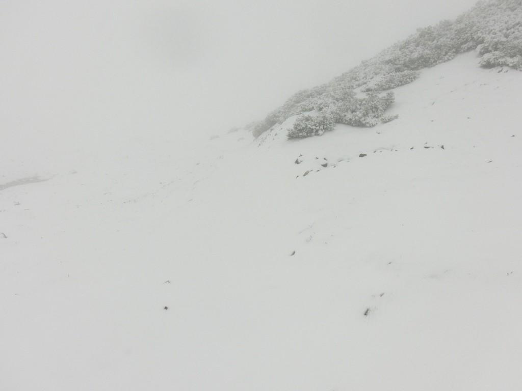 Grau in grau, Schnee mit Nebel.