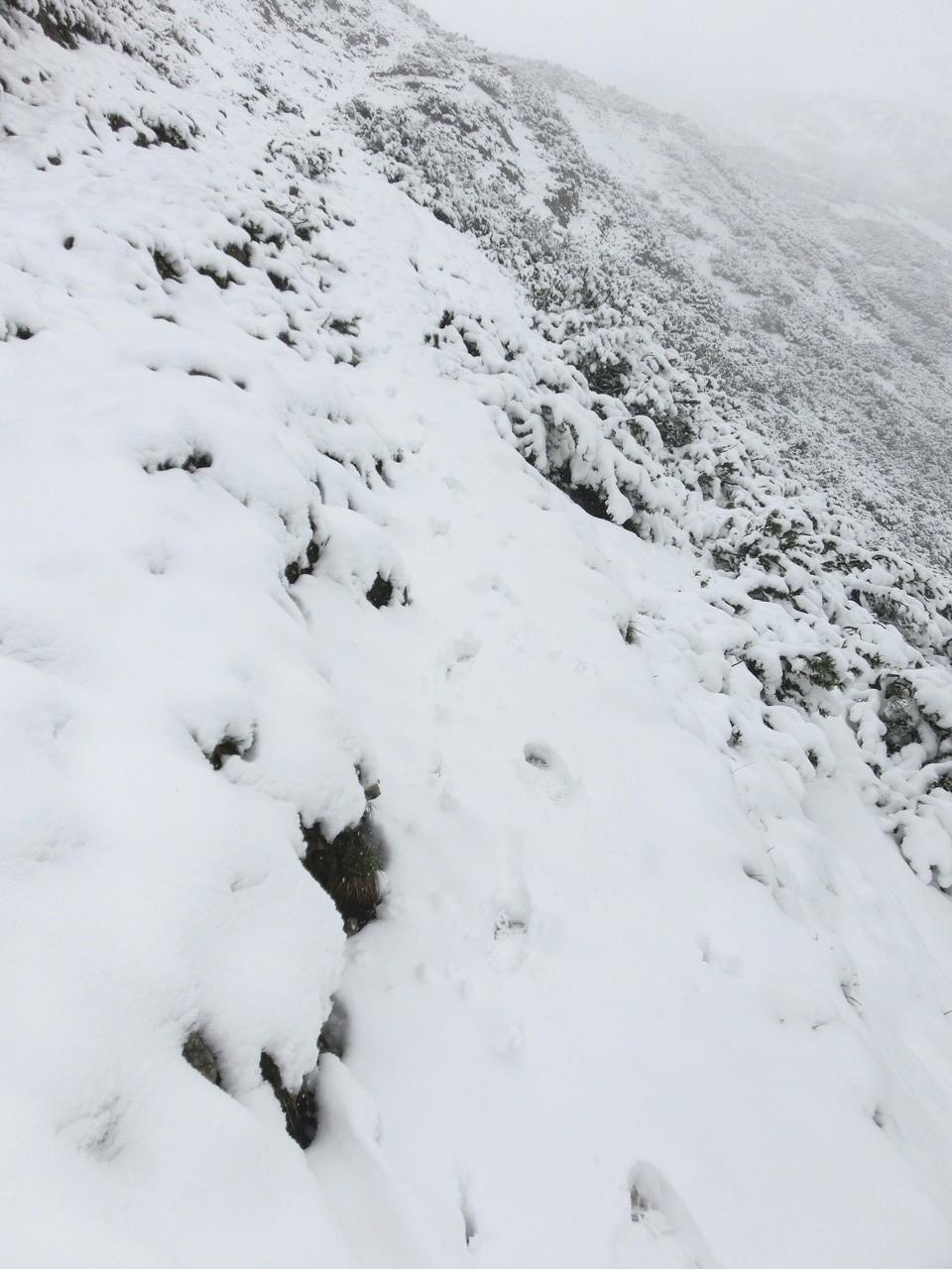 Zurückblickend, meine Spuren im Schnee.