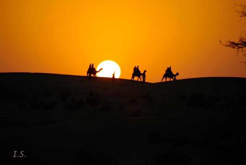 Kanoi Wüste Thar