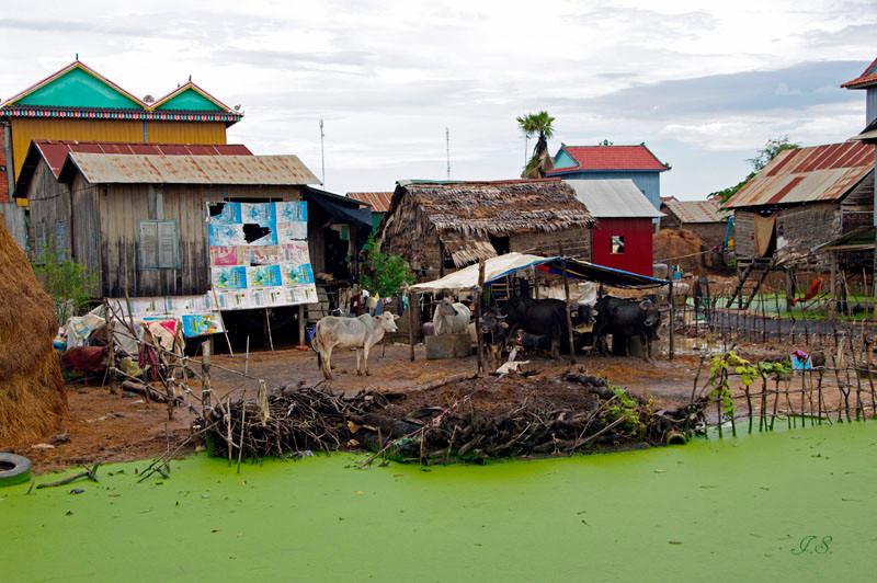 Ländliches Dorf und seine Bewohner