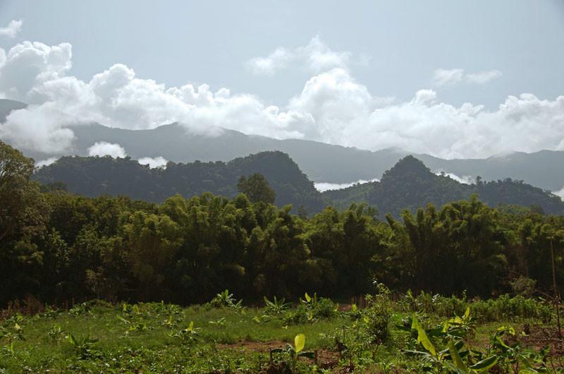 unterwegs zum Elefantendorf am Nam Khan