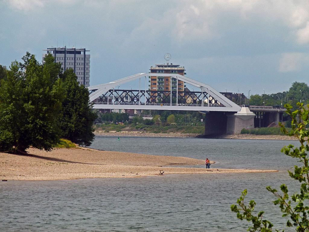 Blick vom Mannheimer Ufer zur Parkinsel