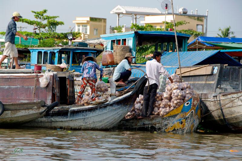 Cai Rang, schwimmender Markt