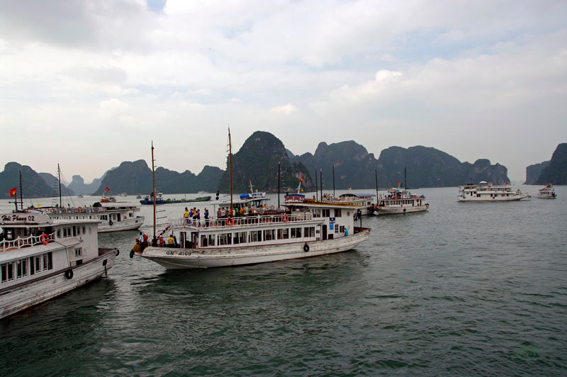 Halong Bucht, Ankunft im Hafen