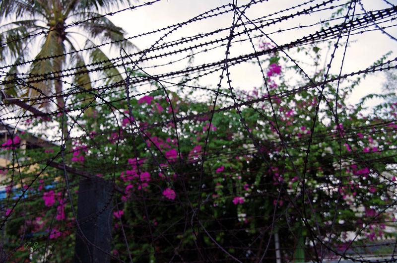 Phnom Penh, Tuol Sleng Genozid Museum