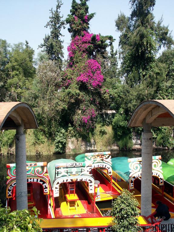 Xochimilko, schwimmende Gärten