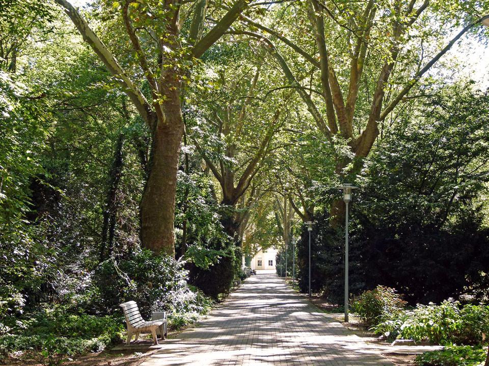 Ebert-Park
