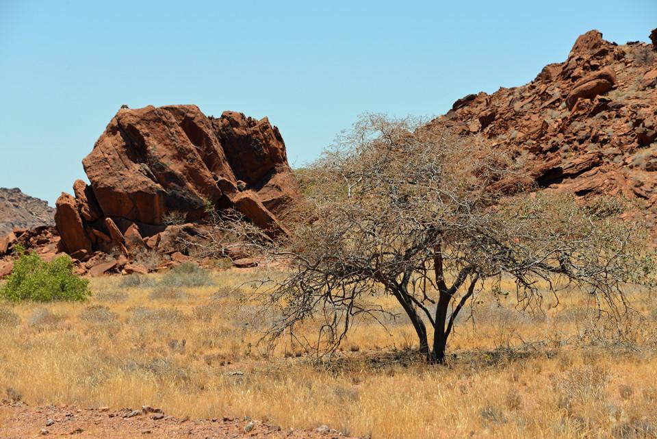 in der Nähe von Twyfelfontein