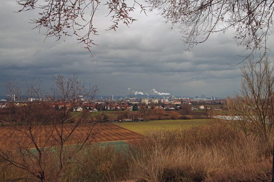 Richtung Friesenheim