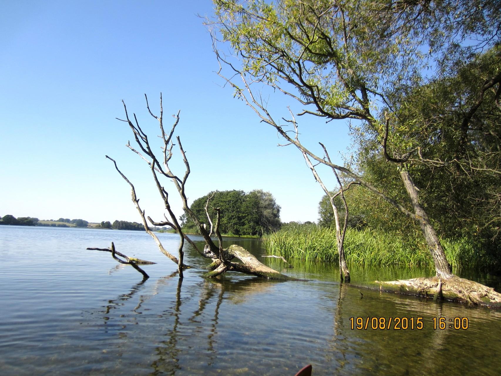 Insel auf dem Wahrensee