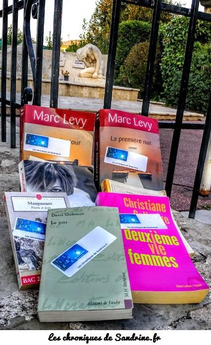 """Les chroniques de Sandrine en mode """"Bookcrossing"""" ou comment partager la culture en lâchant des livres dans la nature"""