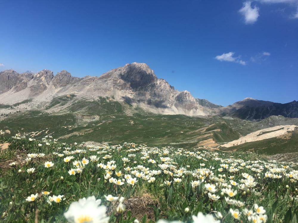 arrivo al colle Salsa Blancias con panorama sulla Rocca Meja