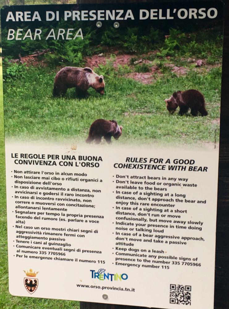 Seit gestern im Bärenland 🐻