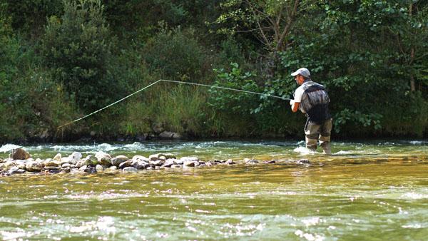 Ouverture de la pêche 2021 - Bilan 2020