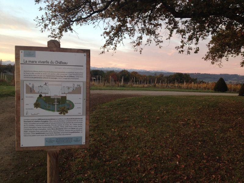 Wine circuit in the vineyard of Madiran and Pacherenc du Vic-Bilh