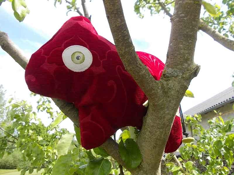 Unser Roter  ist ein wahres Traumtierchen. Er ist ein richtiges Powerpaket, der seine neue Familie gerne beim Klettern begleiten und motivieren möchte.