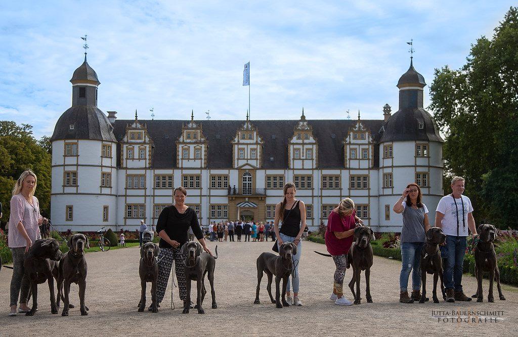 Familienbild vor dem Schloss Paderborn, von links: Dean und Dayla, Carla und Cati, Carlotta, Bommel, Minchen und Heinrich