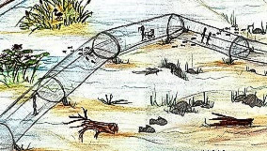 Skizze Utobiotopia Aquatunnel