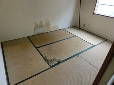 現状回復 和室 畳 壁 穴 ペット