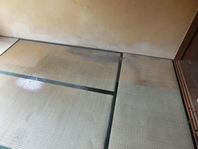 現状回復 和室 畳 クロス 障子 襖 カビ