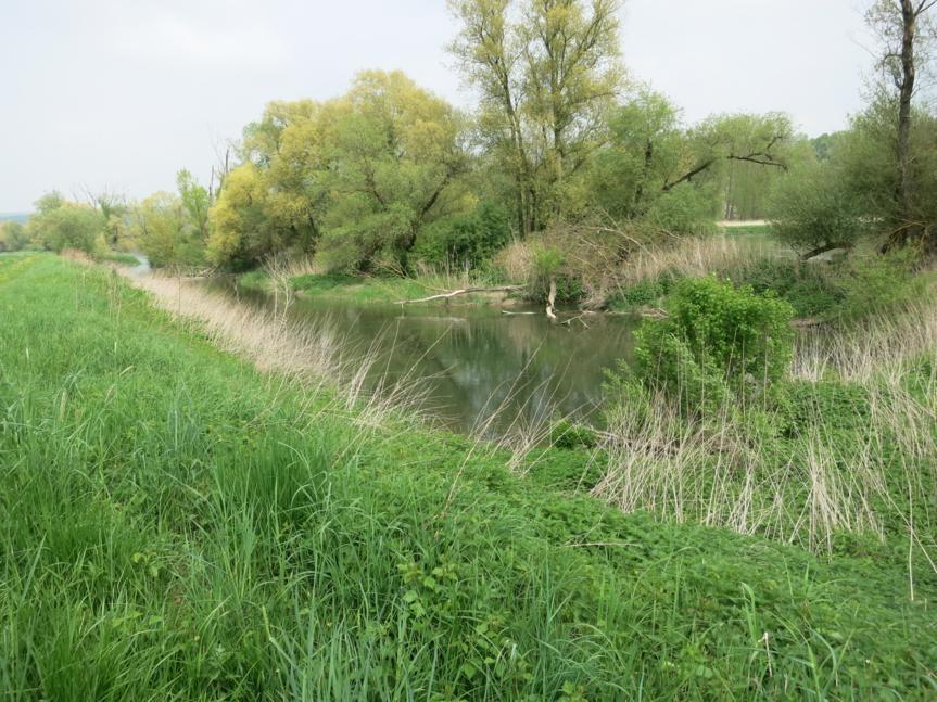 entlang der Donau zur Fähre nach Eining