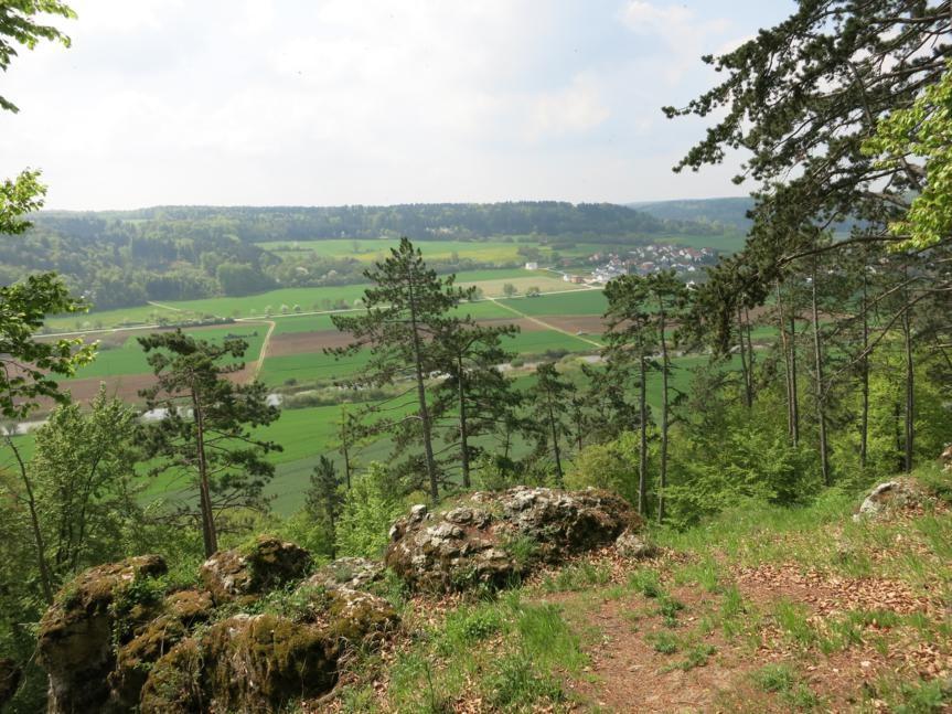 Blick ins Altmühltal (Böhming)