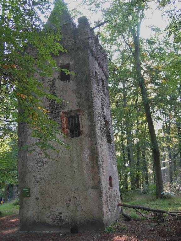 Klosterruine Sankt Wolfgang