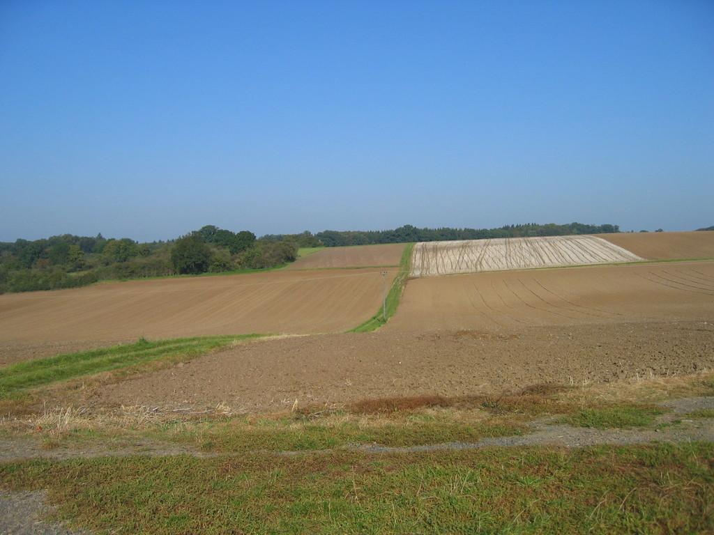 Zwischen Arnsburg und Birklar