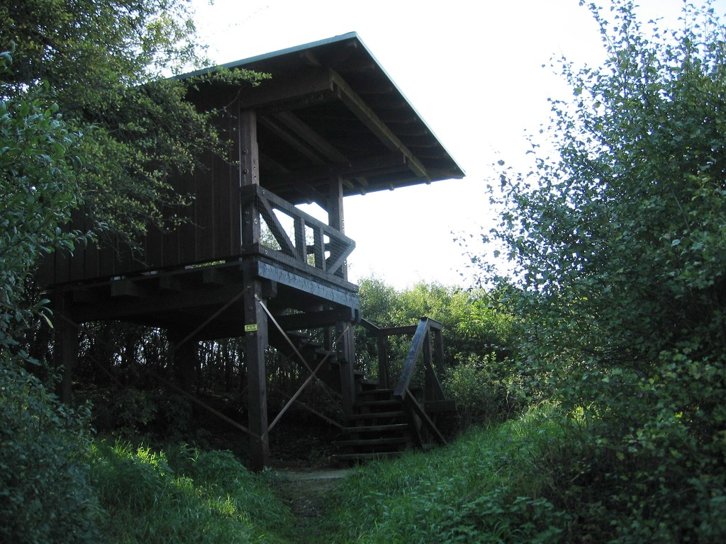 Aussichtsturm NSG Burg