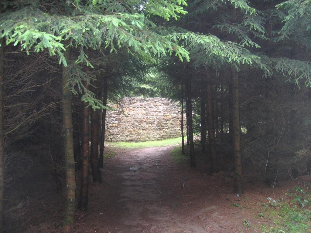 Teufelsmauer im Wald beim WP 12/77