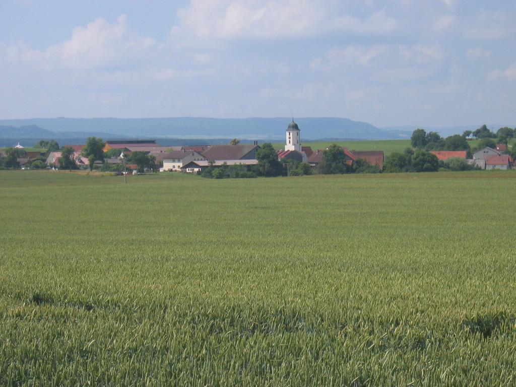Blick zurück nach Halheim