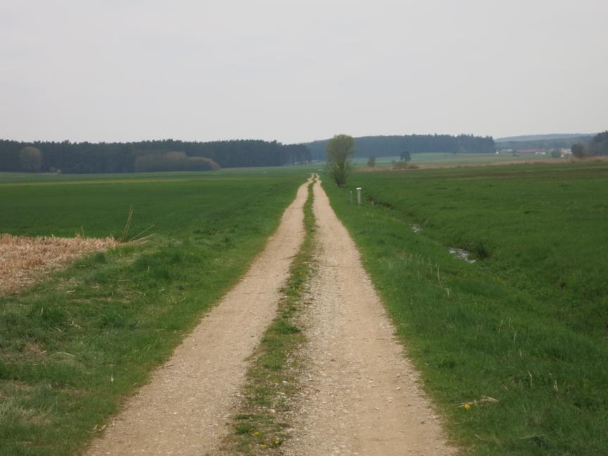 am Hambach entlang Richtung Oberwurmbach