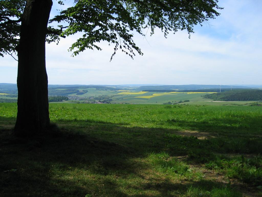 Ausblick  Richtung Westerwald