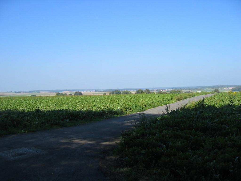 Blick von Limes und Feldheimer Kleinkastell Richtung Hungen